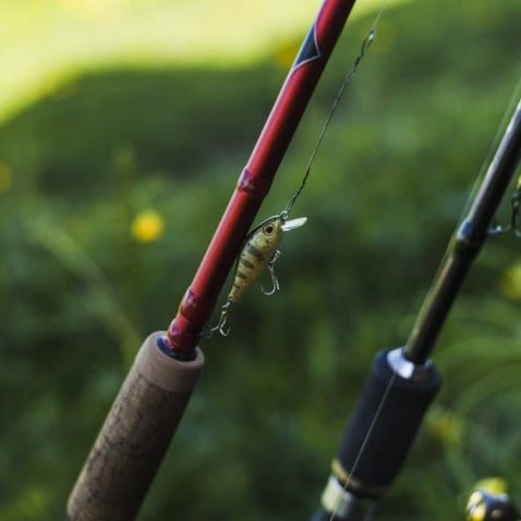 How to Choose a Fishing Rod Material