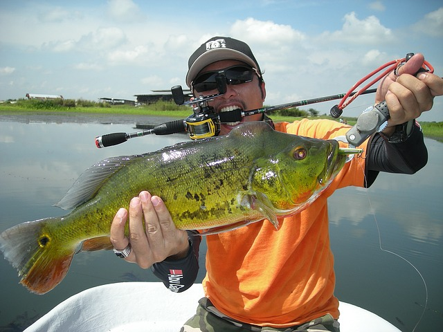Pond Bass Fishing Lures