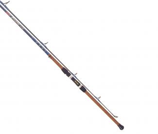 Tica UGSA Serires Surf Spinning Fishing Rod