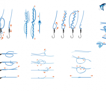 Featured image for fishing knot guide