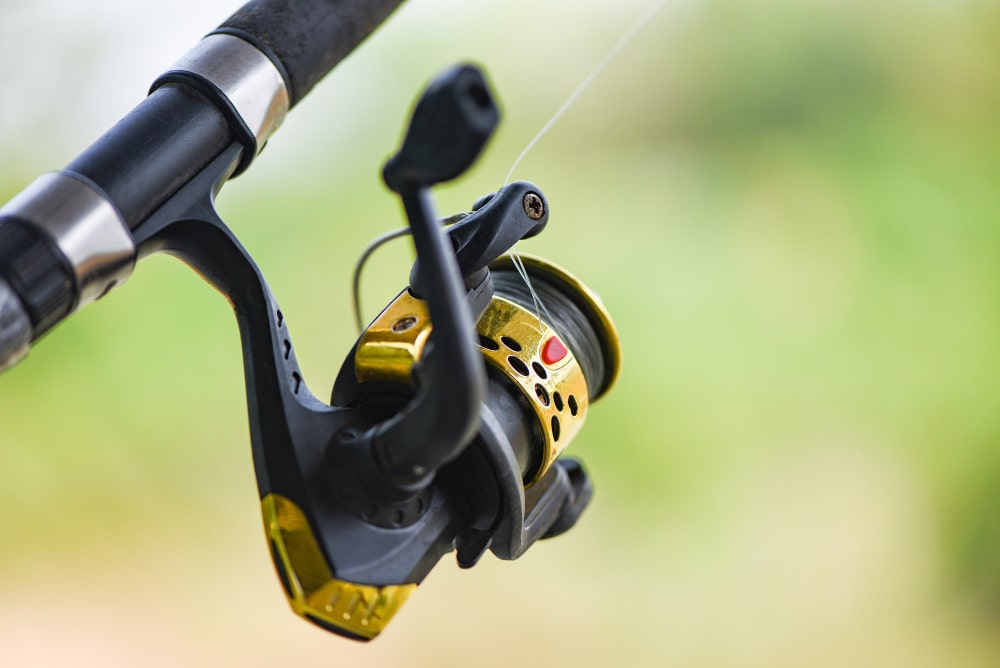 What Are The Different Types Of Reels?